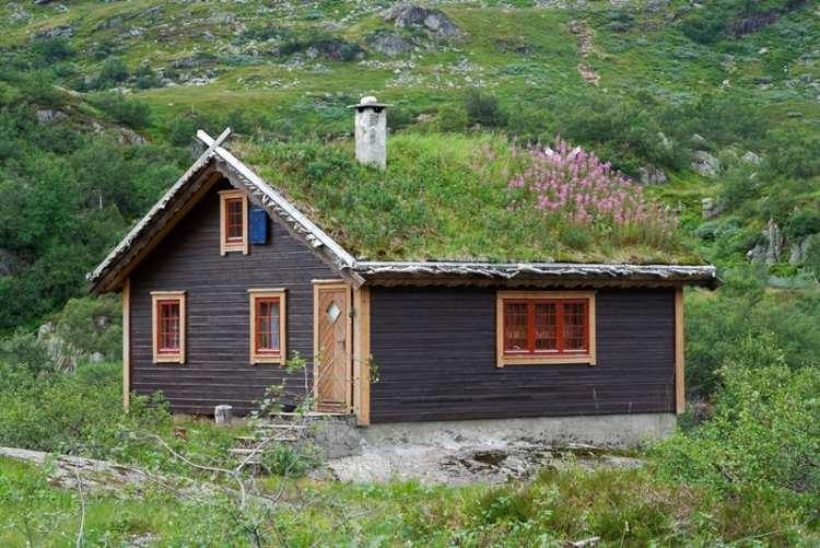 Bajkoviti zeleni krovovi Norveške 13