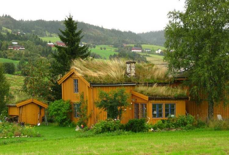 Bajkoviti zeleni krovovi Norveške 21