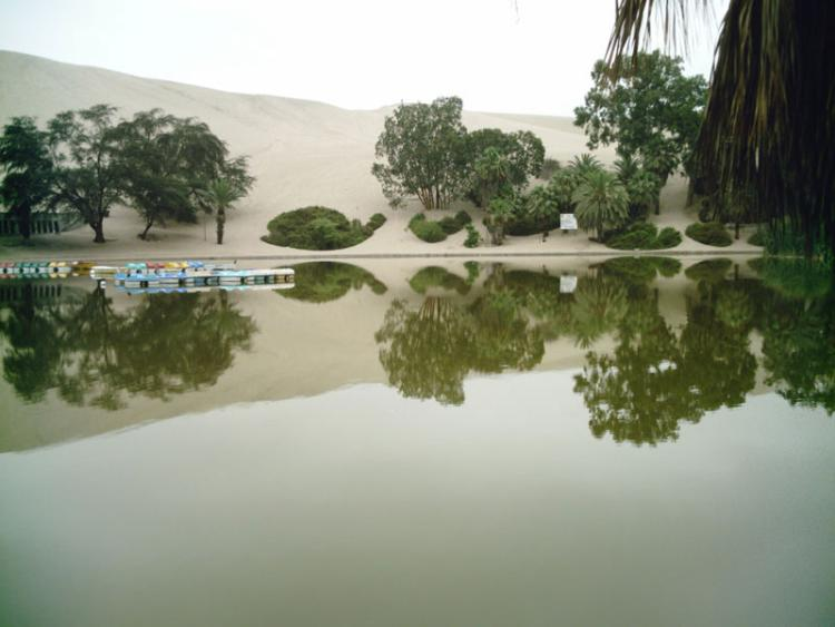 huacachina village desert oasis in peru 7
