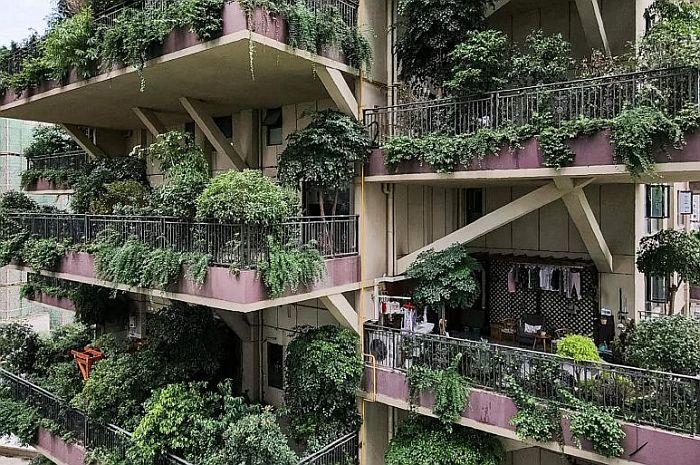 zelene zgrade2