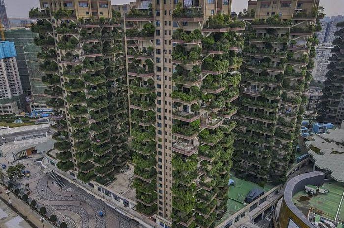 zelene zgrade4