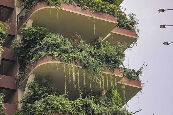 zelene zgrade5
